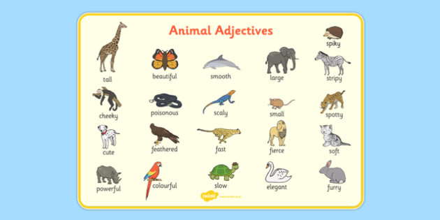 animal adjectives word mat animal adjectives word mat word. Black Bedroom Furniture Sets. Home Design Ideas