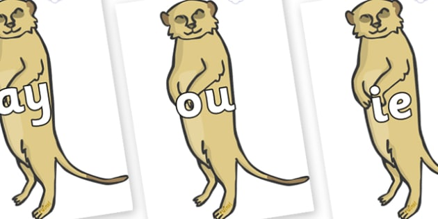 Phase 5 Phonemes on Meerkats - Phonemes, phoneme, Phase 5, Phase five, Foundation, Literacy, Letters and Sounds, DfES, display