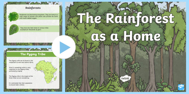 the rainforest as a home powerpoint rainforest tribes of the