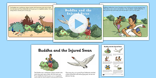 Buddha and the Injured Swan PowerPoint and Script - buddha, injured swan, powerpoint, script