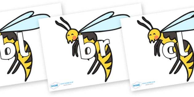 Initial Letter Blends on Wasps - Initial Letters, initial letter, letter blend, letter blends, consonant, consonants, digraph, trigraph, literacy, alphabet, letters, foundation stage literacy
