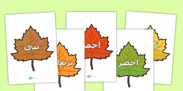 كلمات الألوان على أوراق الخريف - الخريف، الألوان، فصل الخريف