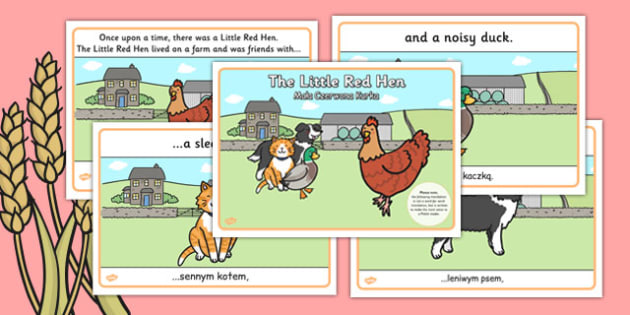 The Little Red Hen Story Polish Translation - polish, little red hen, story