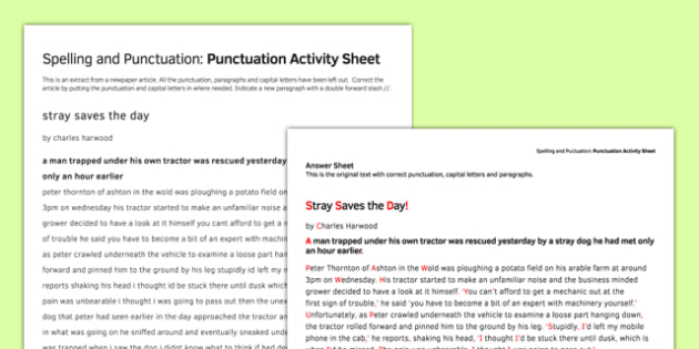 Punctuation Correction Activity Sheet - spelling, punctuation, worksheet