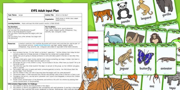 Jungle 'What's In The Box' Adult Led Focus Plan and Resource Pack - plans