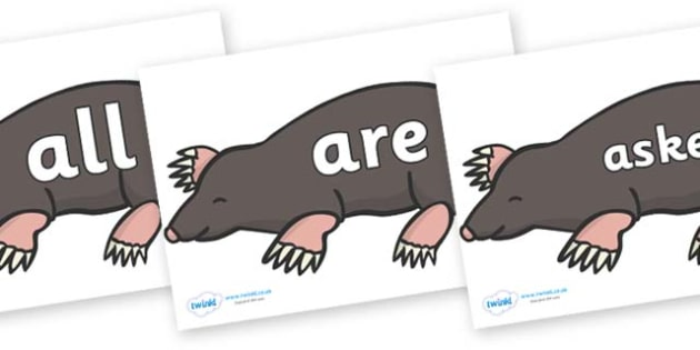 Tricky Words on Moles - Tricky words, DfES Letters and Sounds, Letters and sounds, display, words