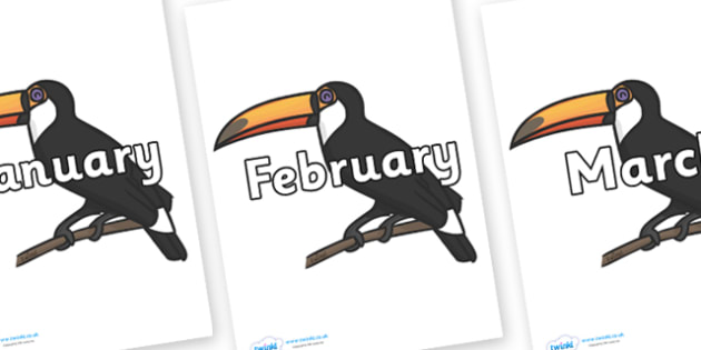 Months of the Year on Toucans - Months of the Year, Months poster, Months display, display, poster, frieze, Months, month, January, February, March, April, May, June, July, August, September