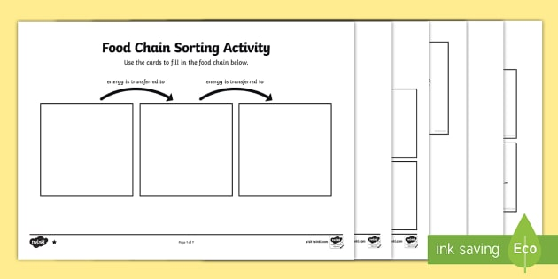 Food Chain Sorting Activity - food chain, sorting, activity, sort, food, chain