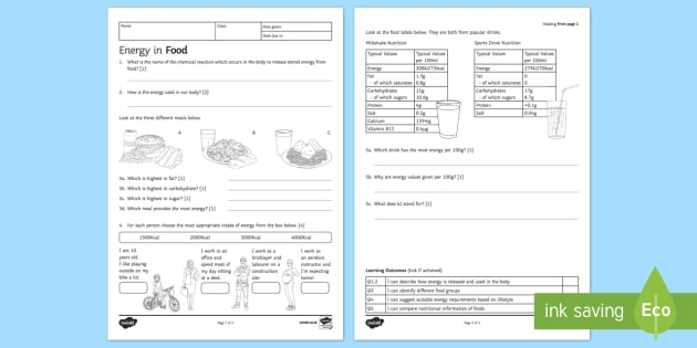 KS3 Energy in Food Homework Worksheet / Worksheet