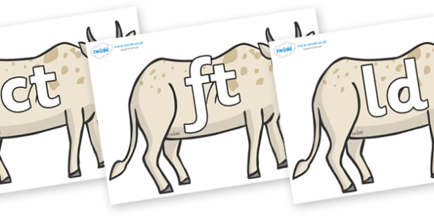 Final Letter Blends on African Ox - Final Letters, final letter, letter blend, letter blends, consonant, consonants, digraph, trigraph, literacy, alphabet, letters, foundation stage literacy
