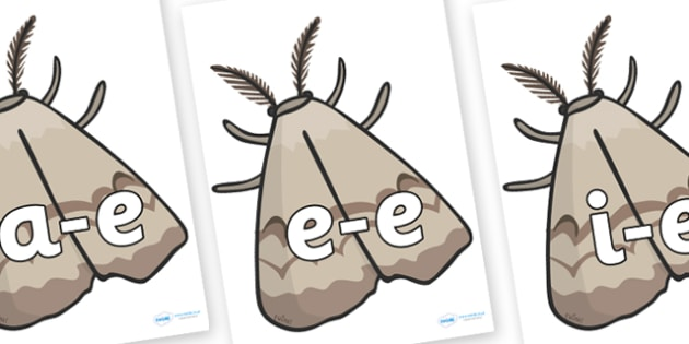 Modifying E Letters on Insects - Modifying E, letters, modify, Phase 5, Phase five, alternative spellings for phonemes, DfES letters and Sounds