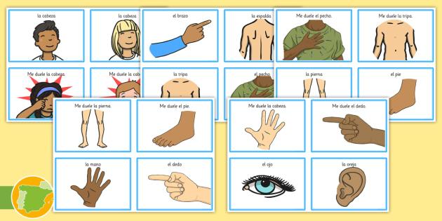 Tarjetas de comunicación - Las partes del cuerpo - molestias, médico, hospital, enfermedad, juego de rol