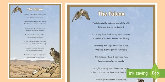 Falcon Poem Display Poster - Science: Living World, falcon