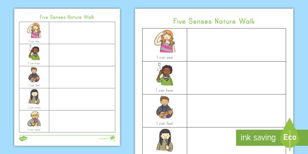 Senses Unit Study Kids Educational Downloads Science Teaching Resources Five Senses Printable Activity Package Homeschool Lessons
