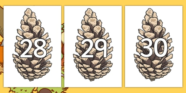 Numbers 0-30 on Pine Cones - Harvest, Cones, Pine Cone, Foundation Numeracy, Number recognition, Number flashcards, 0-30, A4, display, harvest,  harvest festival, fruit, apple, pear, orange, wheat, bread, grain, leaves, conker