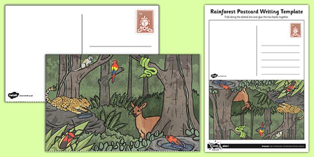 Rainforest Postcard Writing Template - rainforest, postcard, writing template, writing, template