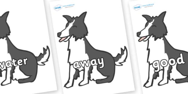 Next 200 Common Words on Sheep Dogs - Next 200 Common Words on  - DfES Letters and Sounds, Letters and Sounds, Letters and sounds words, Common words, 200 common words