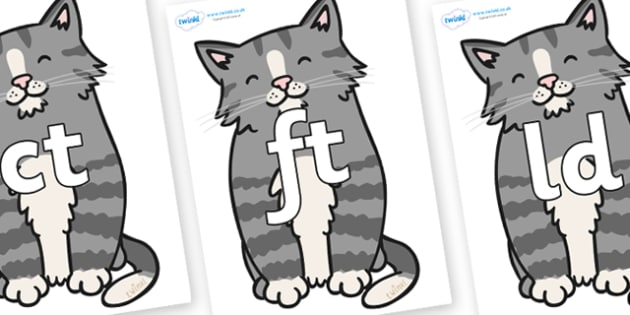 Final Letter Blends on Kittens - Final Letters, final letter, letter blend, letter blends, consonant, consonants, digraph, trigraph, literacy, alphabet, letters, foundation stage literacy