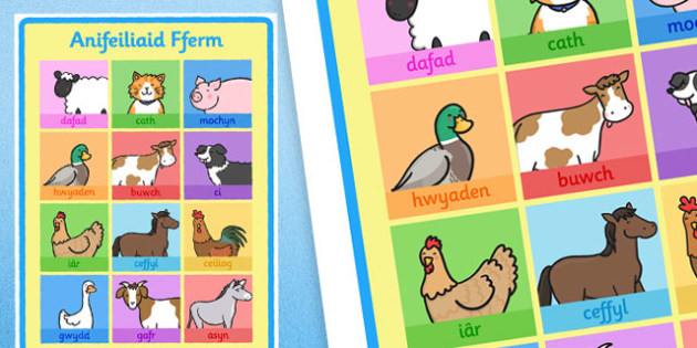 The Farm Animals Display Poster Welsh - displays, posters, farms