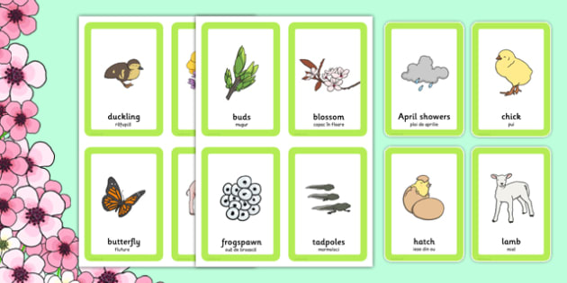 Spring Pairs Matching Game Romanian Translation - romanian, games, match, activity, activities