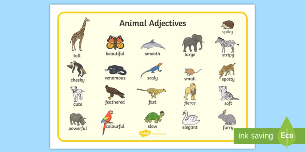 animal adjectives word mat