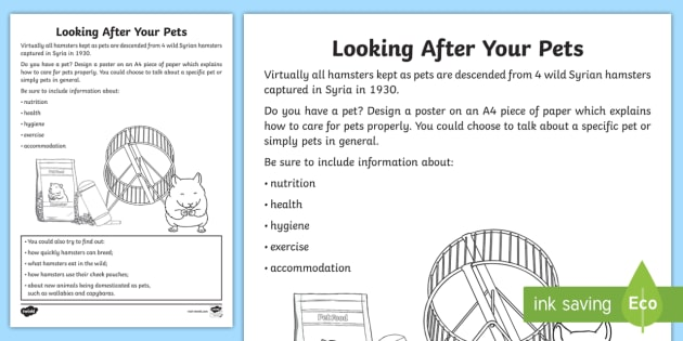 looking after your pets worksheet activity sheet animals care caring. Black Bedroom Furniture Sets. Home Design Ideas