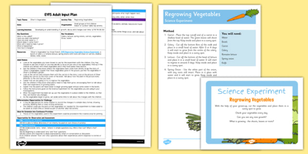 EYFS Regrowing Vegetables Adult Input Plan and Resource Pack