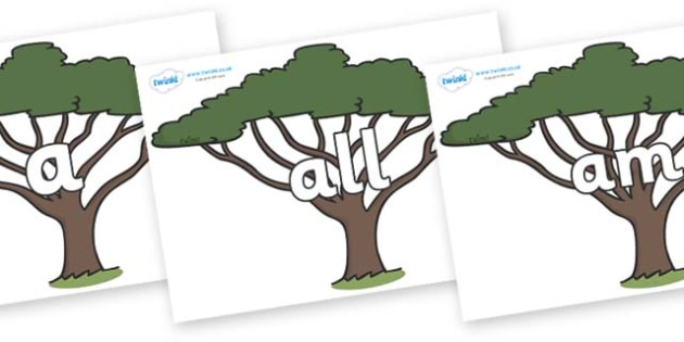 Foundation Stage 2 Keywords on Acacia Trees - FS2, CLL, keywords, Communication language and literacy,  Display, Key words, high frequency words, foundation stage literacy, DfES Letters and Sounds, Letters and Sounds, spelling