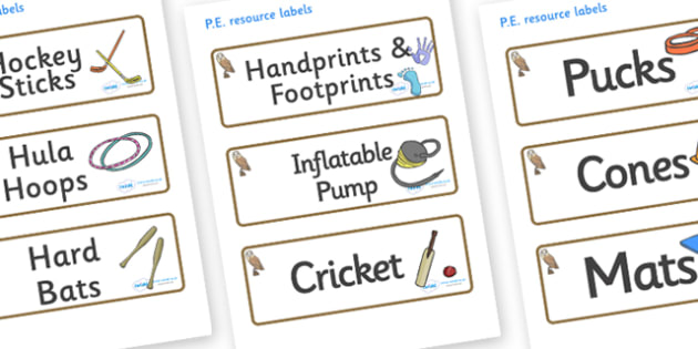 Owl Themed Editable PE Resource Labels - Themed PE label, PE equipment, PE, physical education, PE cupboard, PE, physical development, quoits, cones, bats, balls, Resource Label, Editable Labels, KS1 Labels, Foundation Labels, Foundation Stage Labels