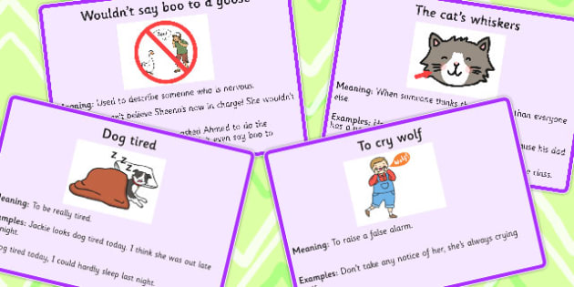 Animal Idioms Meaning Cards Set 3 Animal Idioms Meaning