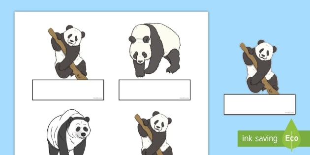 Panda Self-Registration Labels - register, classroom management,
