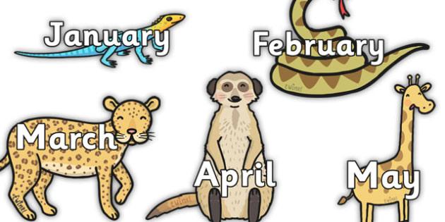 Months of the Year on Safari Animals - safari, on safari, safari animals, months of the year on safari animals, safari calendar, safari calendar display