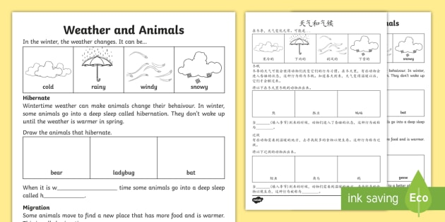 new weather and animals worksheet english mandarin chinese hibernate. Black Bedroom Furniture Sets. Home Design Ideas