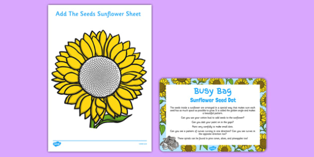 Sunflower Seed Dot Busy Bag Prompt Card and Resource Pack - flower, flowers, paint, cotton bud, fibonacci, spiral, golden angle, golden ratio
