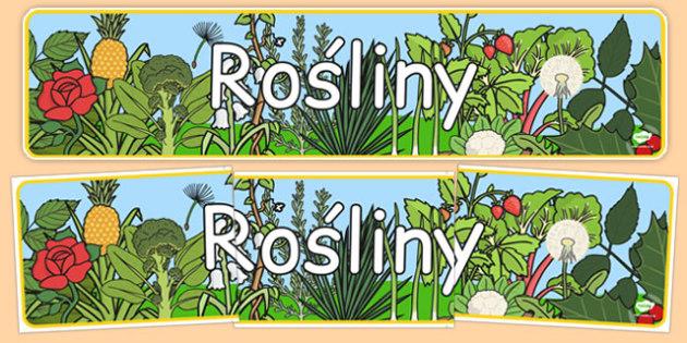 Banner na gazetkę Rośliny po polsku - przyroda, wiosna, biologia