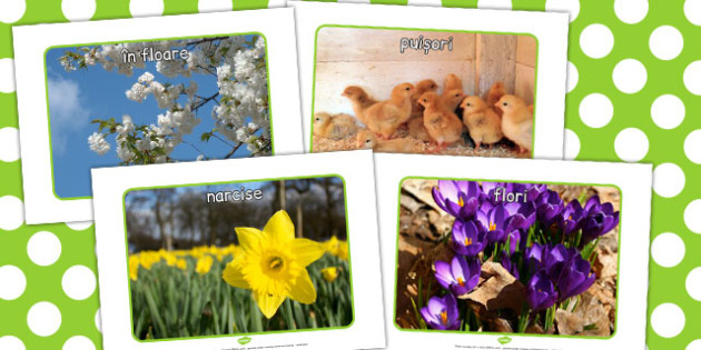 Primăvara - Planșe cu fotografii - primăvara, decor, fotografii, imagini, anotimpuri, anotimp, materiale didactice, română, romana, material, material