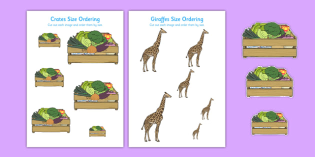 Giraffes and Crates Size Ordering - animals, maths, numeracy, order, shape, big, small, activity, sheet, KS1, primary,