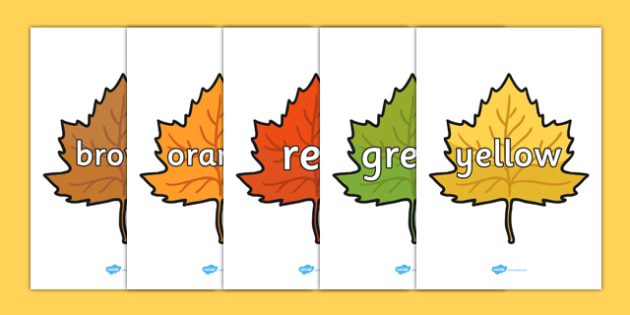 Color Words on Fall Leaves - Leaves, color display, color posters, color, display, poster, posters, colour mixing, black, white, red, green, blue, yellow, orange, purple, pink, brown, fall, seasons, fall pictures, fall display, leaves, ac
