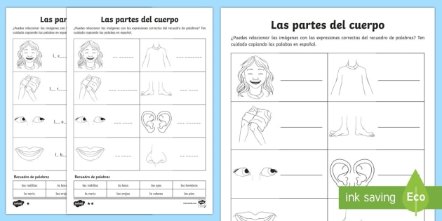 Las partes del cuerpo My Body Parts Activity Sheet Spanish - spanish, my body, body parts, activity, worksheet