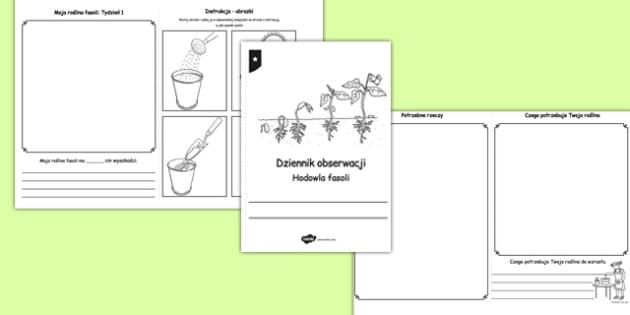 Dziennich hodowli fasoli po polsku - przyroda, rośliny