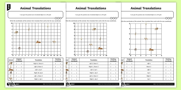 Coordinates And Translation Differentiated Worksheet