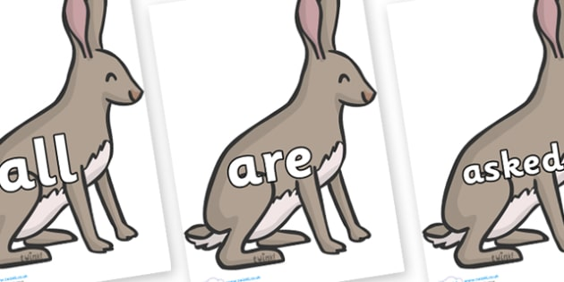 Tricky Words on Hares - Tricky words, DfES Letters and Sounds, Letters and sounds, display, words