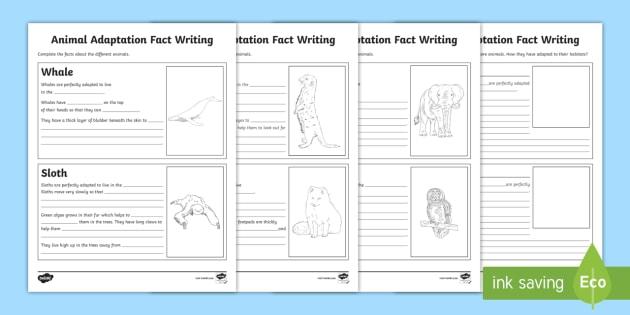 new animal adaptation fact writing activity sheets life. Black Bedroom Furniture Sets. Home Design Ideas
