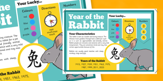 Chinese New Year of the Rabbit Display Poster - chinese new year, display poster, information, year of the rabbit