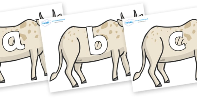 Phoneme Set on African Ox - Phoneme set, phonemes, phoneme, Letters and Sounds, DfES, display, Phase 1, Phase 2, Phase 3, Phase 5, Foundation, Literacy