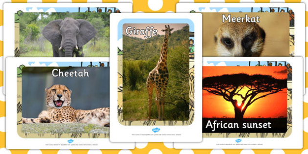 Safari Animal Display Photo Cut-Outs - jungle, animals, display