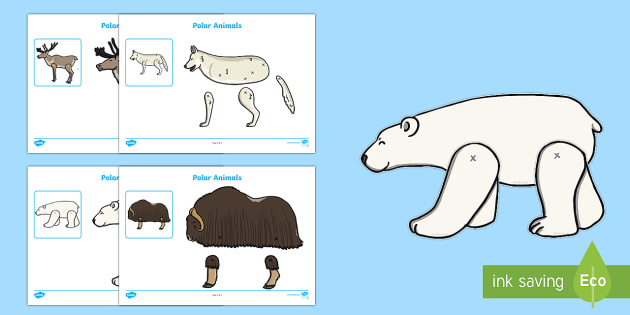 Polar Animals Split Pin Activity - The Arctic, Polar Regions, north pole, south pole, explorers