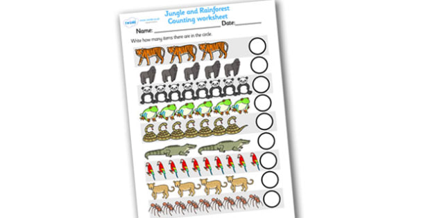 My Counting Worksheet (Jungle & Rainforest) - home school, free