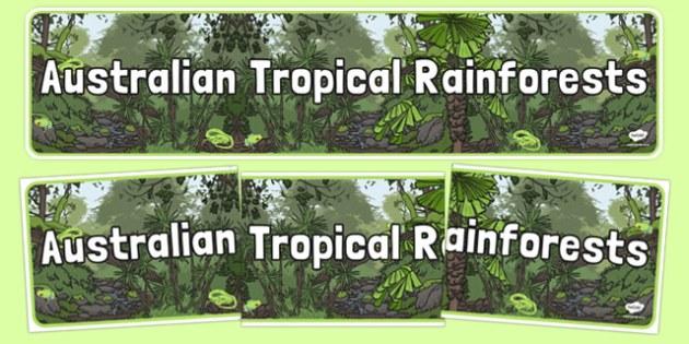 Australian Tropical Rainforests Display Banner - australia, Science, Habitats, Australian Curriculum, Living, Living Adventure, Environment, Living Things, Animals, Plants, Display Banner, Good to Grow, Ready Set Grow, Life on Earth, Tropical, Rainfo