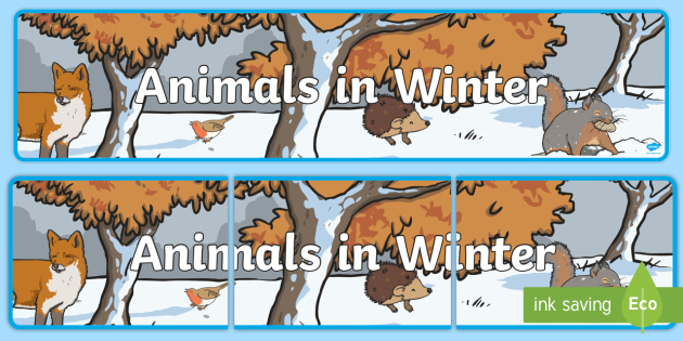 Animals in Winter Banner - Signs and Labels, nocturnal, winter, squirrel, hedgehog, birds, trees, woodland, diurnal,